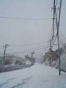 ★雪ですね〜★