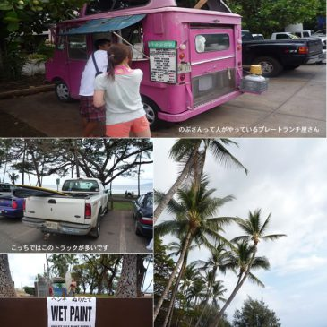 Maui パイア