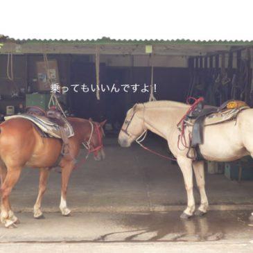第4回 六甲縦走キャノンボール大会のお知らせ Vol.2