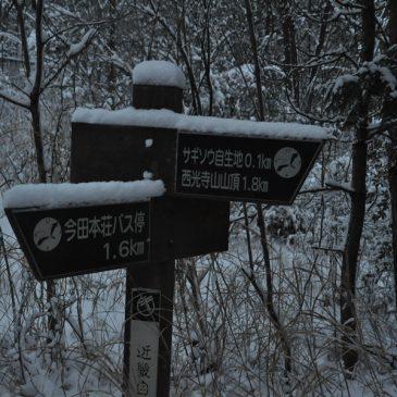 西光寺山に行ってきました