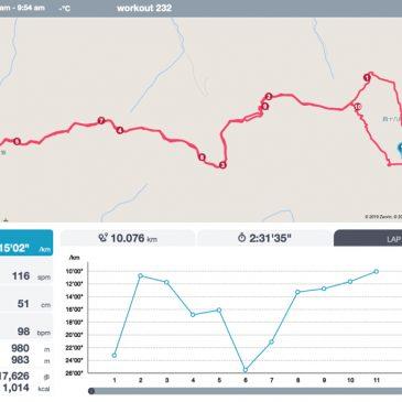 ささみ四十八滝から小金ヶ嶽を走ってきました!
